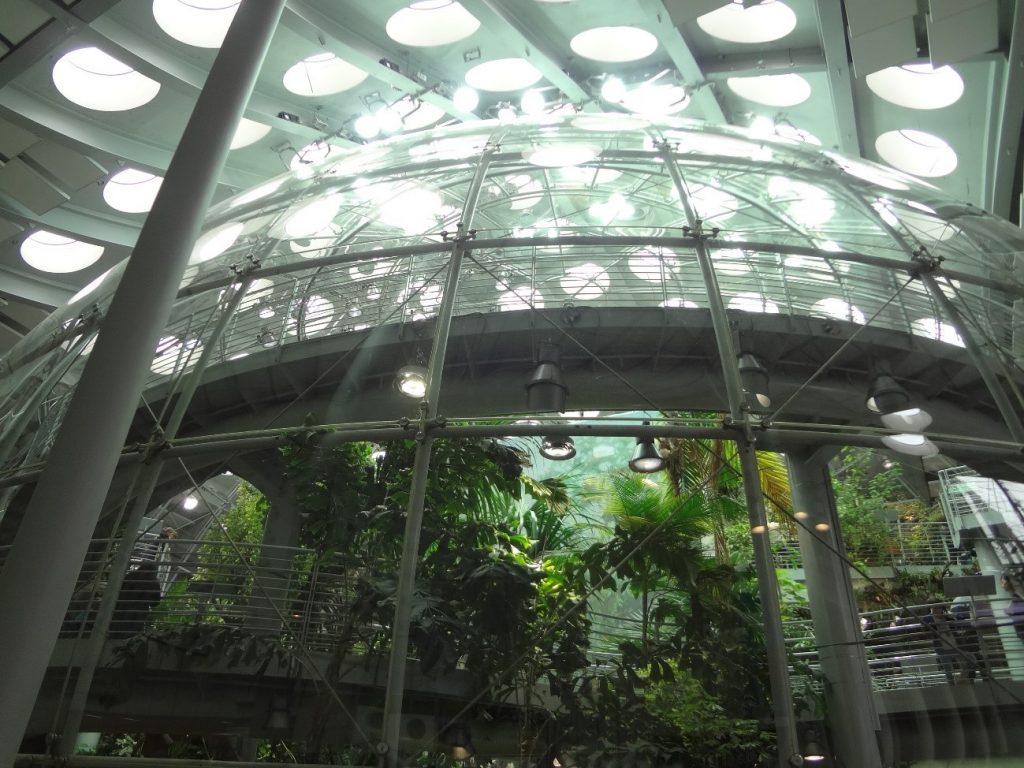 動植物展示