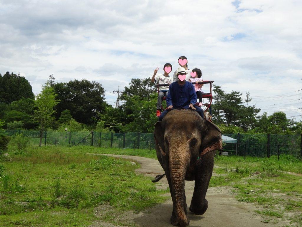 娘とゾウに乗る